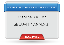 security-analyst