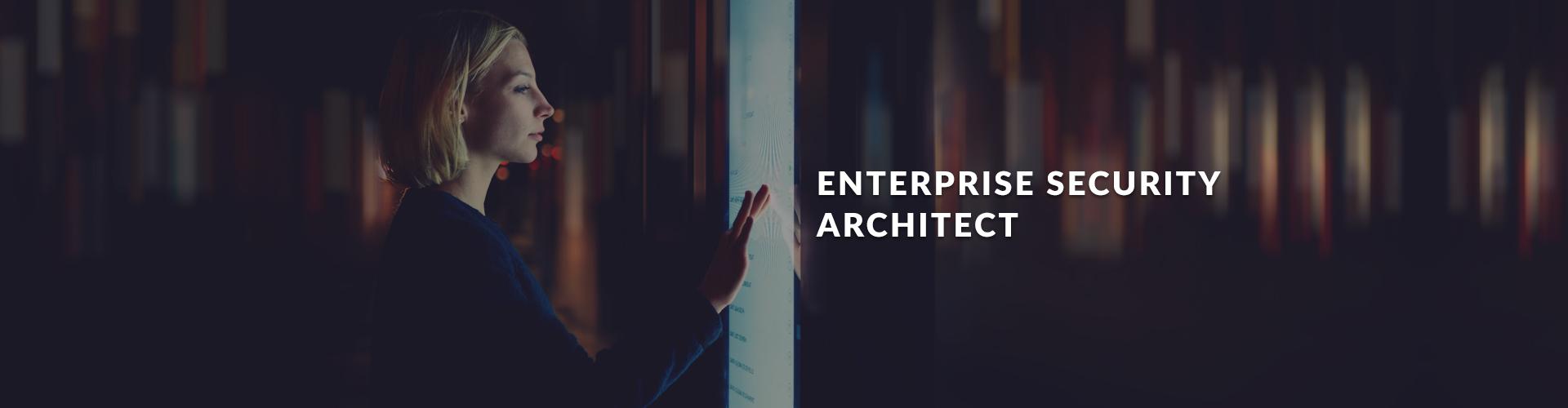 Enterprise Security Architect